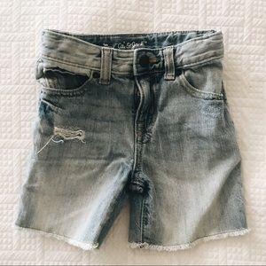 Cat & Jack Jean Shorts 3t distressed